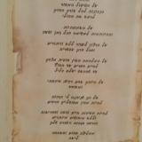 לבנה פלורנס שטרן – קליניקת יוניברסא-לי